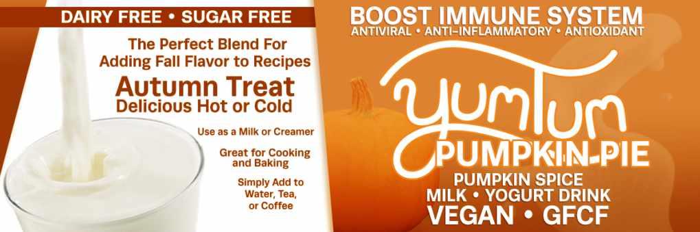 Pumpkin Spice DairyFree Milk